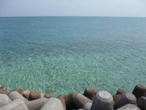 【写】石垣の海