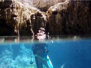 水上と水中